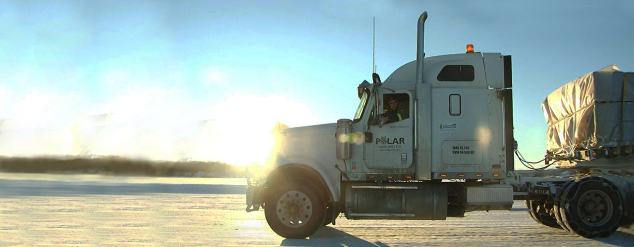 lisa ice road truckers death